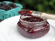 Blackberry Barbecue Sauce found on PunkDomestics.com