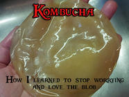 Kombucha: or How I Learned to Love the Blob found on PunkDomestics.com