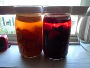 Kvass:  Winter Tonics that Heal found on PunkDomestics.com