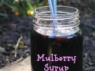 Mulberry Syrup found on PunkDomestics.com