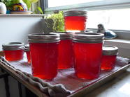 Blood Orange Mimosa Jelly found on PunkDomestics.com