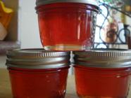 Hawthorn Jelly found on PunkDomestics.com