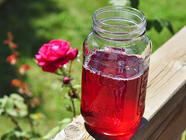 Homemade Rose Syrup and Drink Concentrate found on PunkDomestics.com