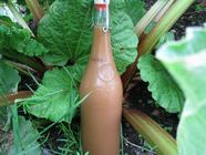 Hot and Sour Rhubarb Ketchup found on PunkDomestics.com