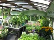 Alternative Ways to Build a Greenhouse found on PunkDomestics.com