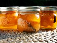 Apricots in Syrup found on PunkDomestics.com