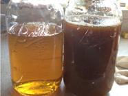 Homemade Apple Cider found on PunkDomestics.com