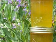 Dandelion Jelly found on PunkDomestics.com