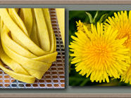 Dandelion Flower Pasta found on PunkDomestics.com