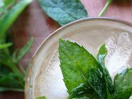 Earl Grey, Lemon Verbena and Mint Syrup found on PunkDomestics.com