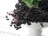 Elderberries found on PunkDomestics.com