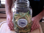 Fermented Dilly Beans found on PunkDomestics.com