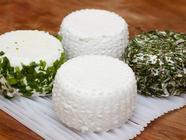 Goat Cheese Making: Homemade Chèvre found on PunkDomestics.com