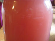 Fruit Kvass: Rhubarb, Lemon-Barley, Apricot found on PunkDomestics.com