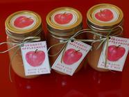 Cinnamon Applesauce found on PunkDomestics.com