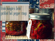 Putting Food By: Pickled Pepper Rings found on PunkDomestics.com