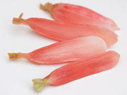 Japanese Style 'Instant' Radish Pickles found on PunkDomestics.com