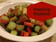 Freezing Rhubarb found on PunkDomestics.com