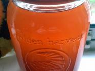 Rhubarb-Apricot Cordial found on PunkDomestics.com