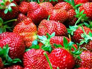 Sherried Strawberry Jam found on PunkDomestics.com